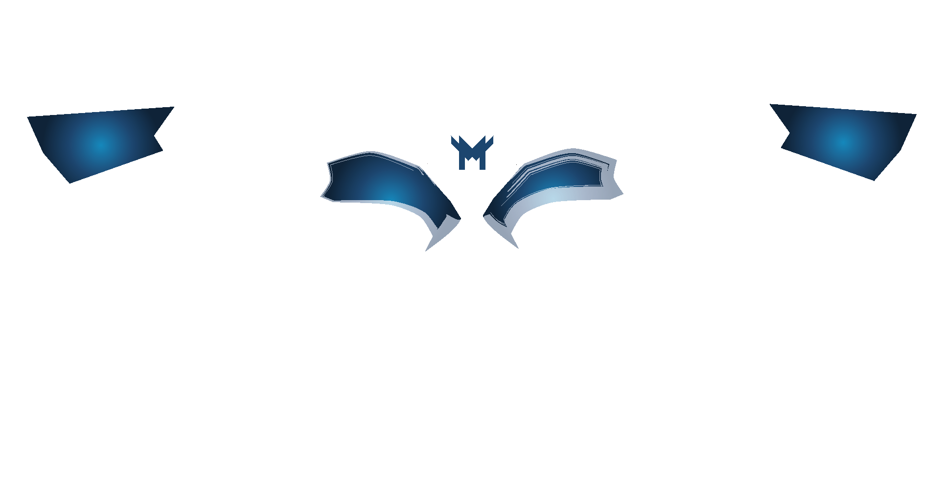 MothMotion